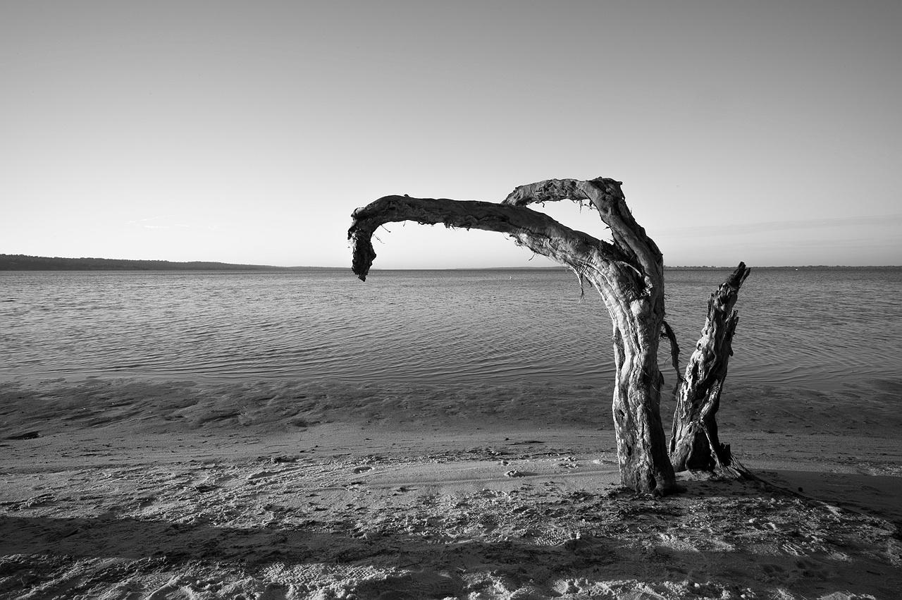 Mandurah_estuary_monochrome_landscape_photography_07