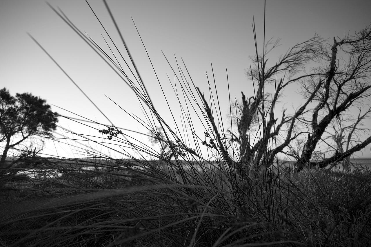 Mandurah_estuary_monochrome_landscape_photography_10