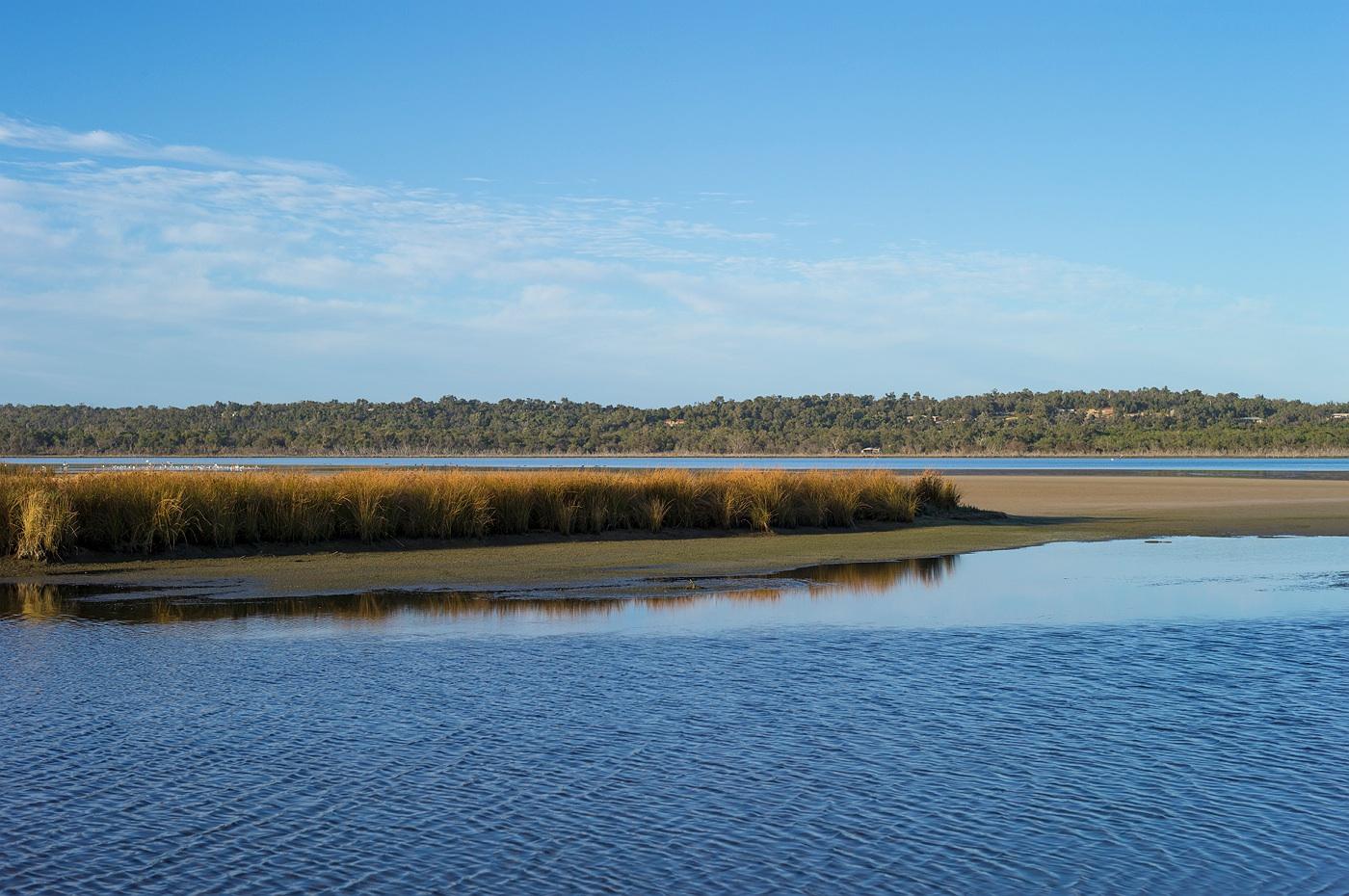 harvey_river_landscape_photography_18