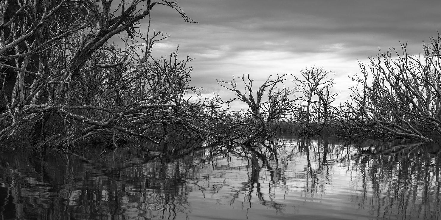 harvey_river_monochrome_stormy_1