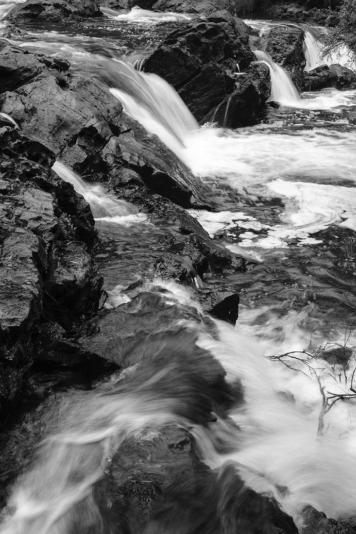 22_pemberton_walpole_forest