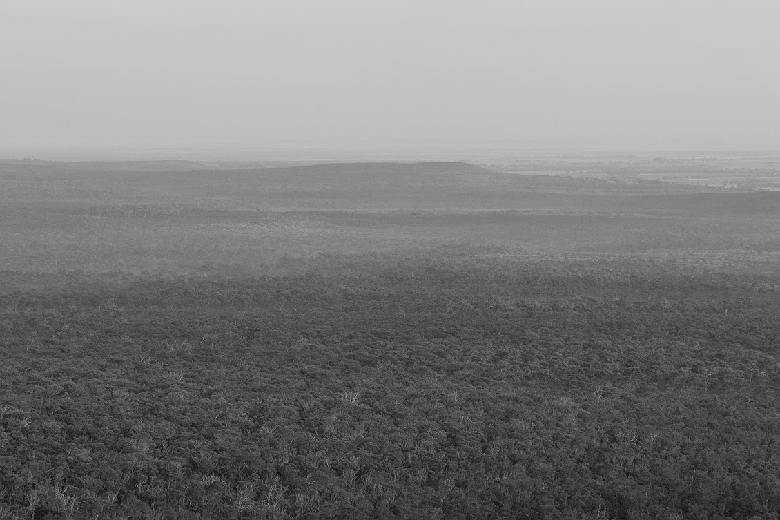 0302_stirling_ranges_national_park_monochrome