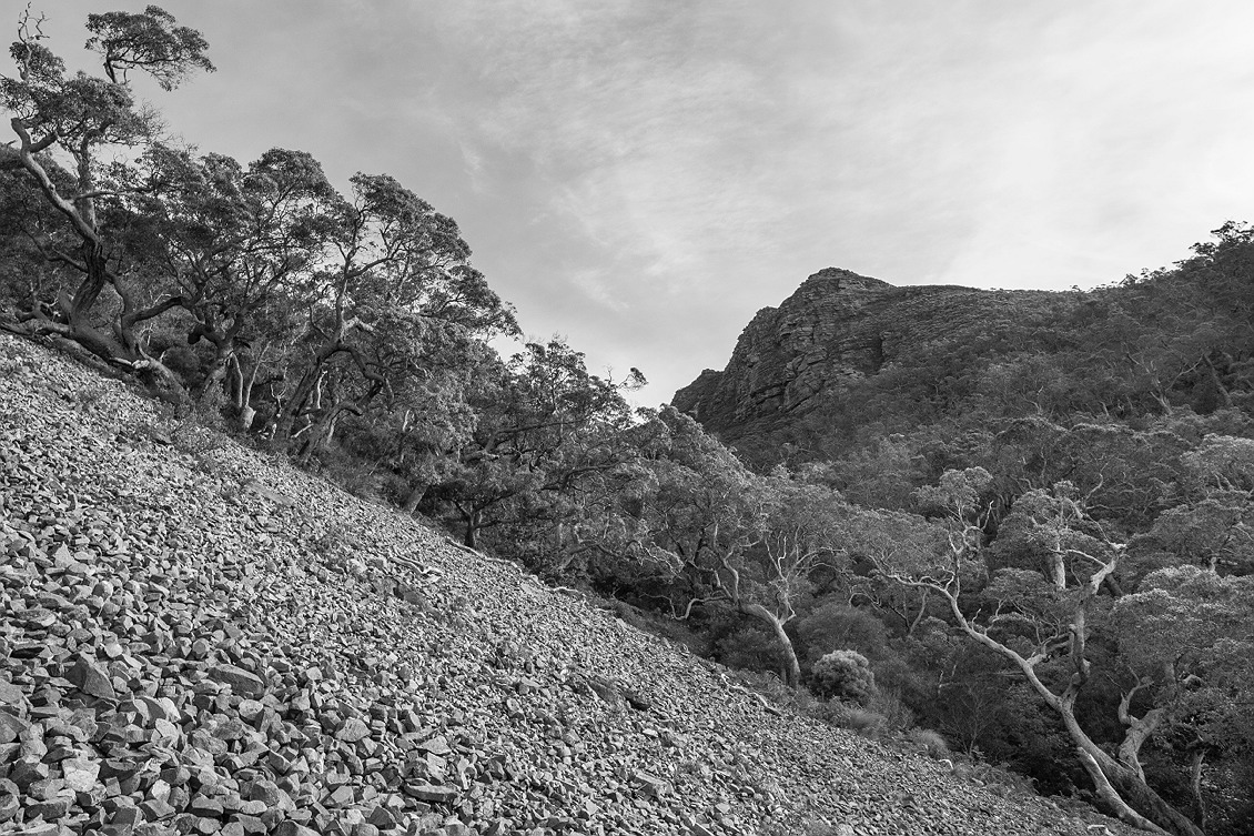 2513_stirling_ranges_national_park_monochrome_toolbrunup_peak