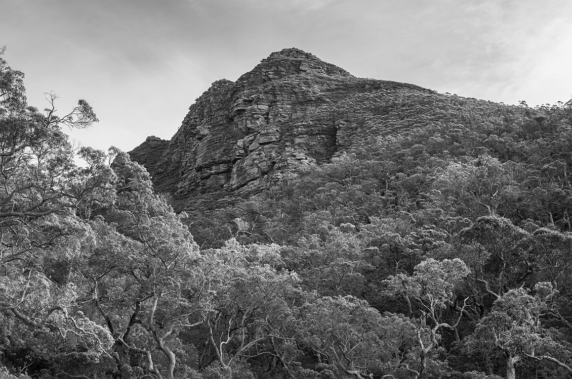 2714_stirling_ranges_national_park_monochrome_toolbrunup_peak