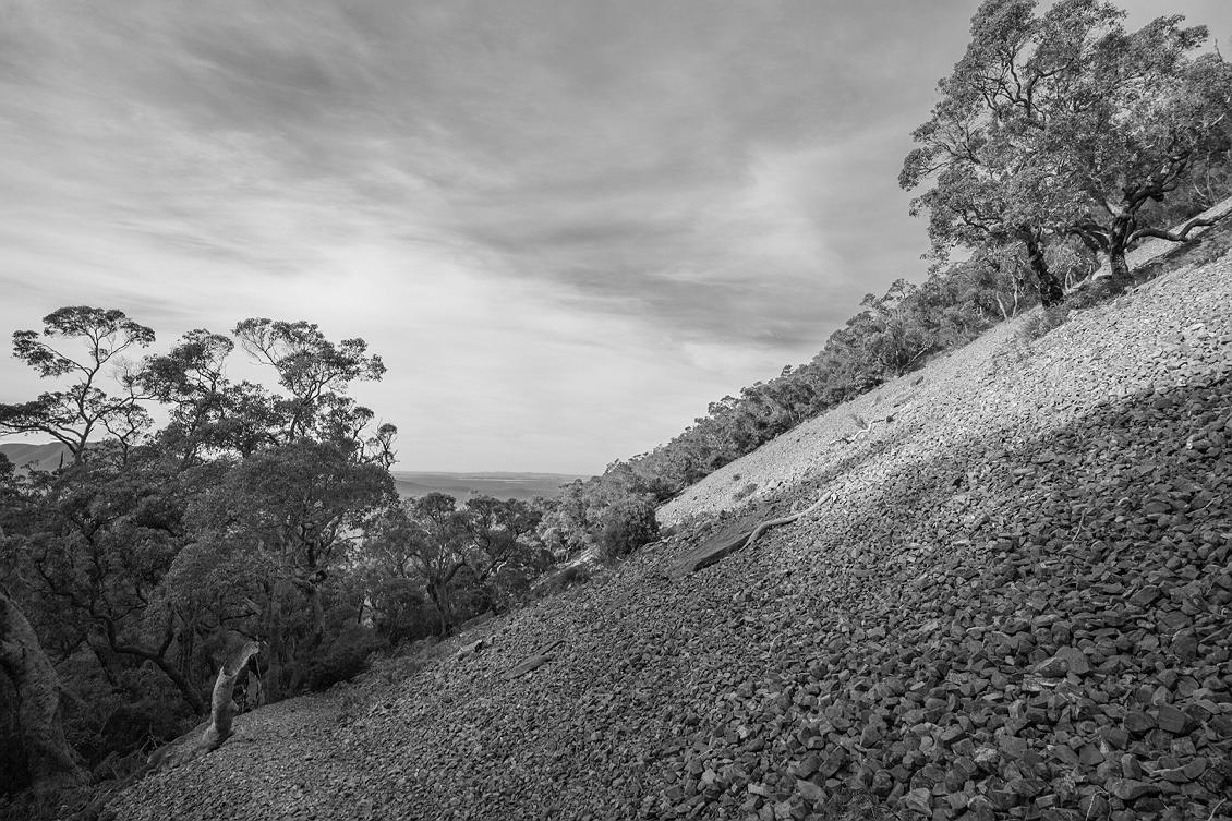 2915_stirling_ranges_national_park_monochrome_toolbrunup_peak