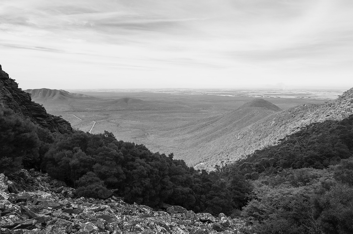4121_stirling_ranges_national_park_monochrome_toolbrunup_peak