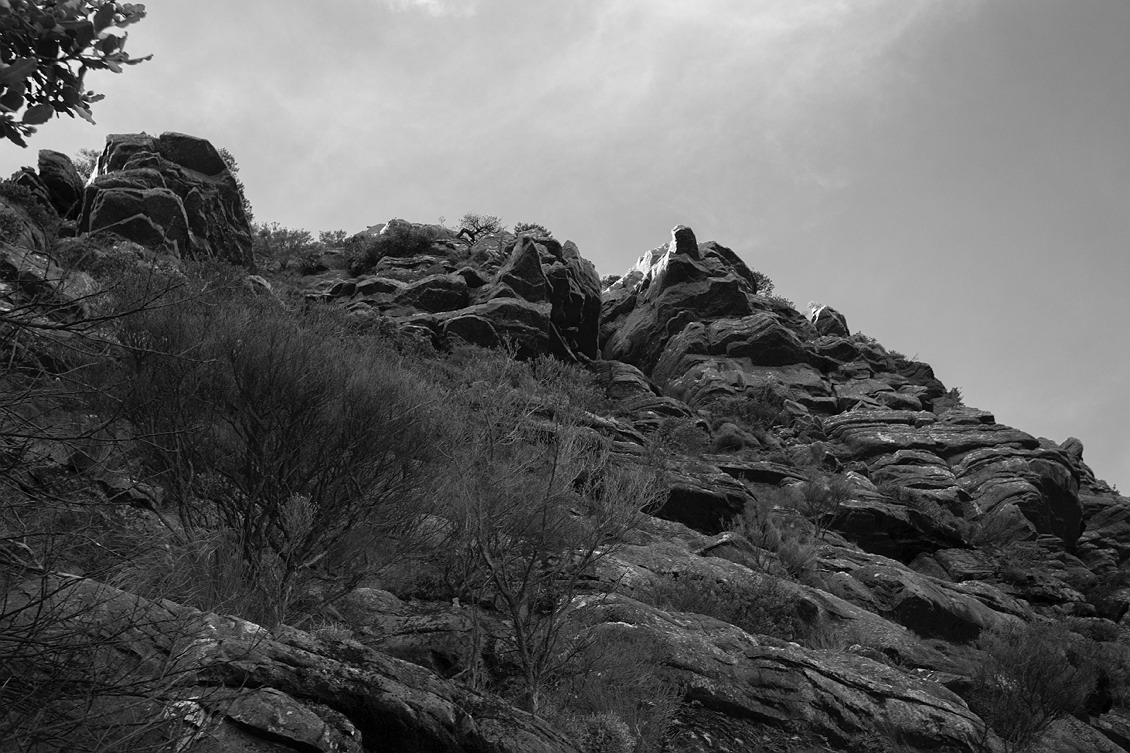 4925_stirling_ranges_national_park_monochrome_toolbrunup_peak