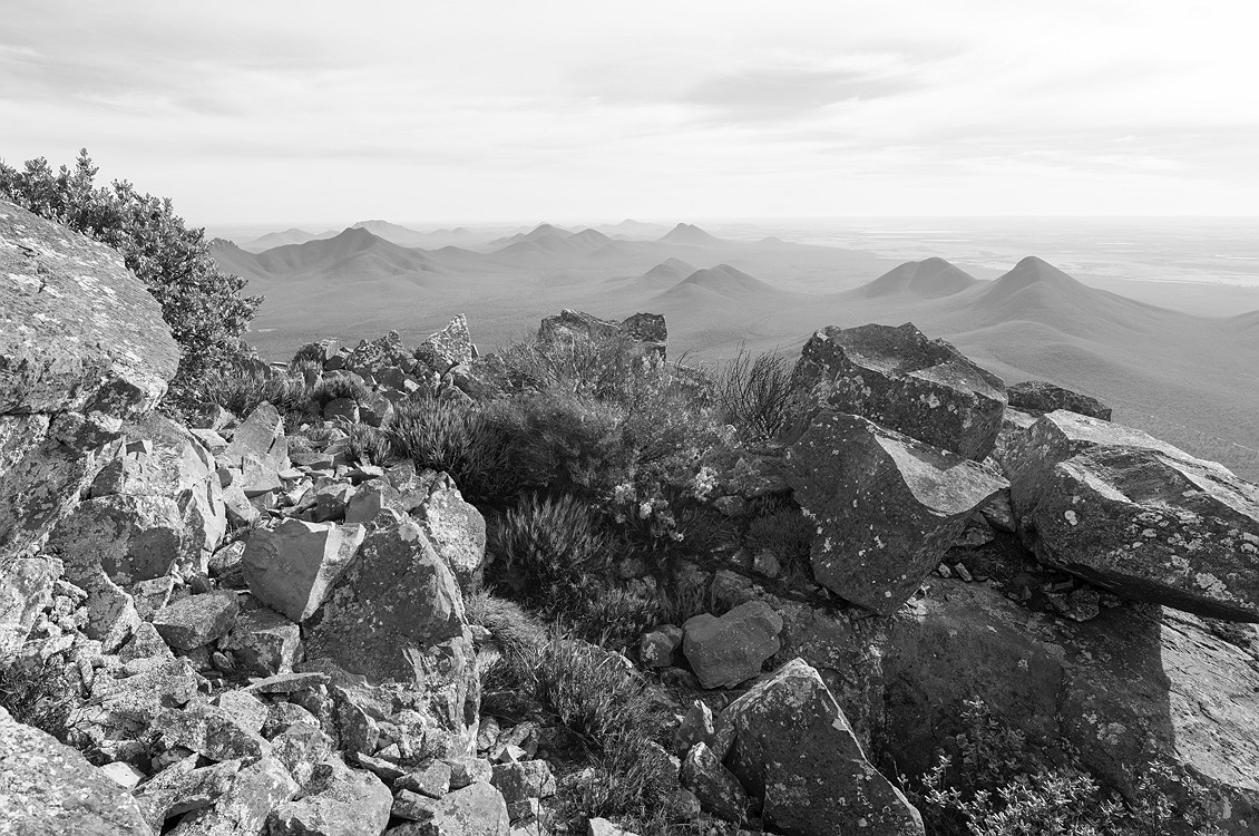 8542_stirling_ranges_national_park_monochrome_toolbrunup_peak