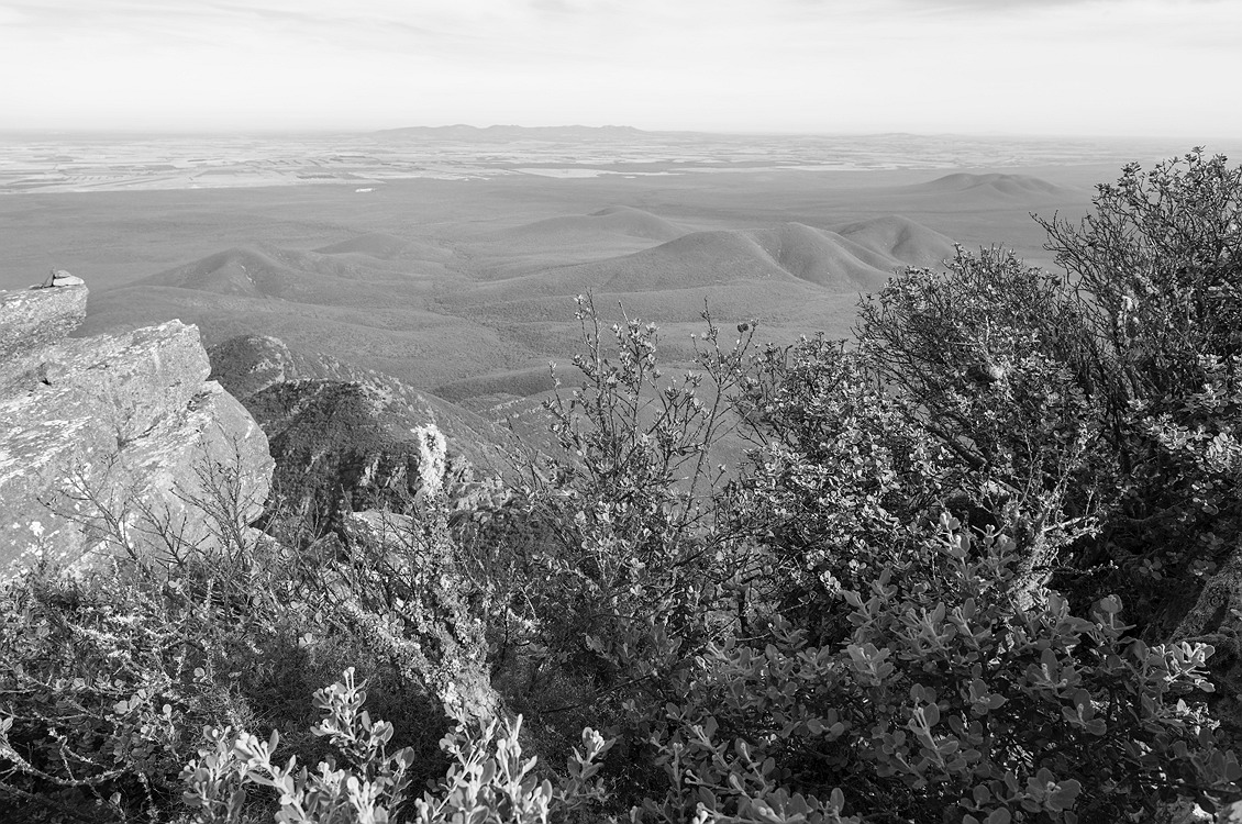 8945_stirling_ranges_national_park_monochrome_toolbrunup_peak