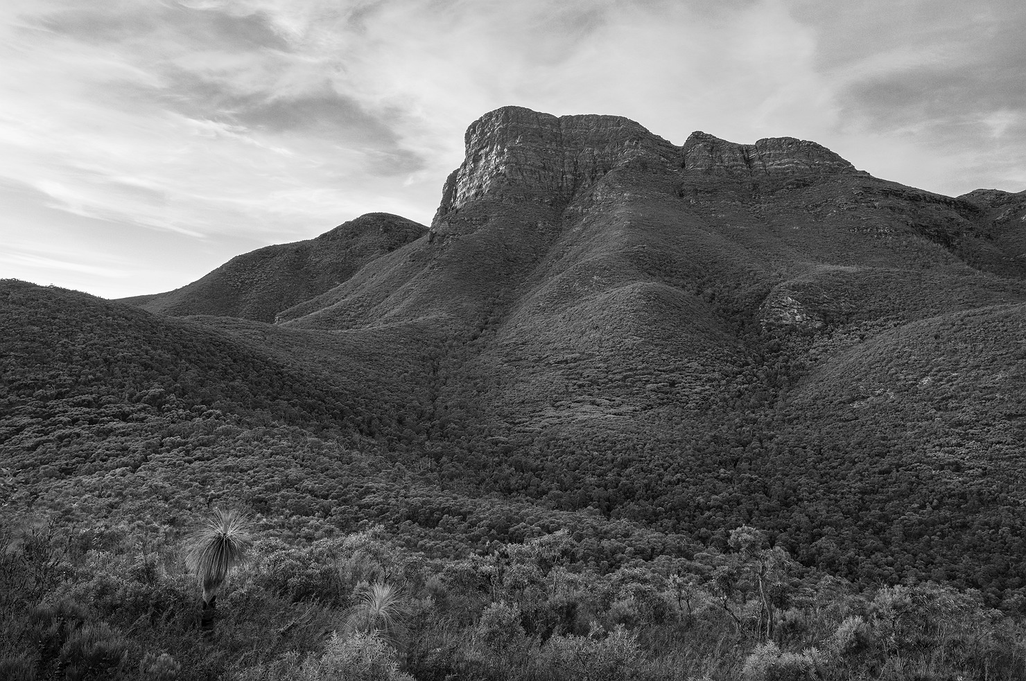 bluff_knoll_stirling_ranges_national_park_monochrome