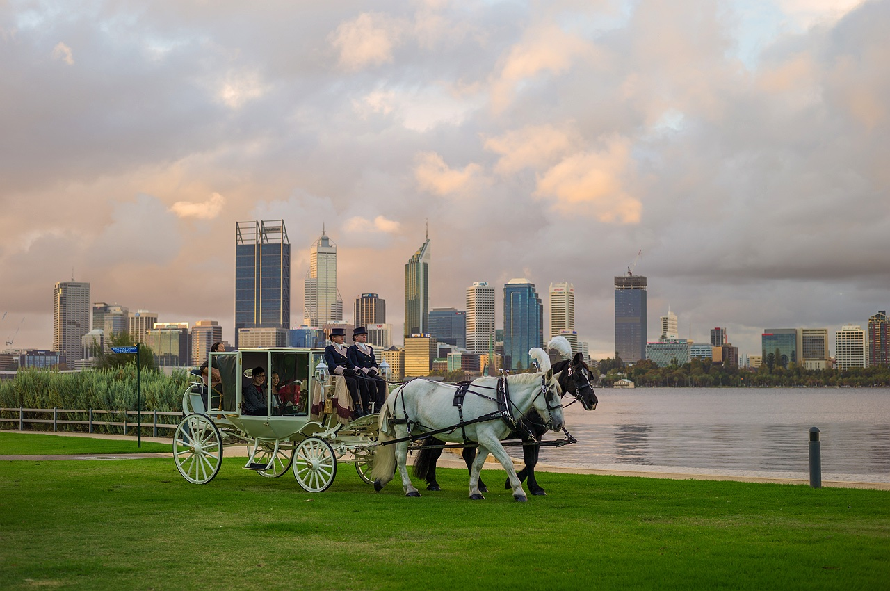 perth_city_horse_carriage_marriage_proposal