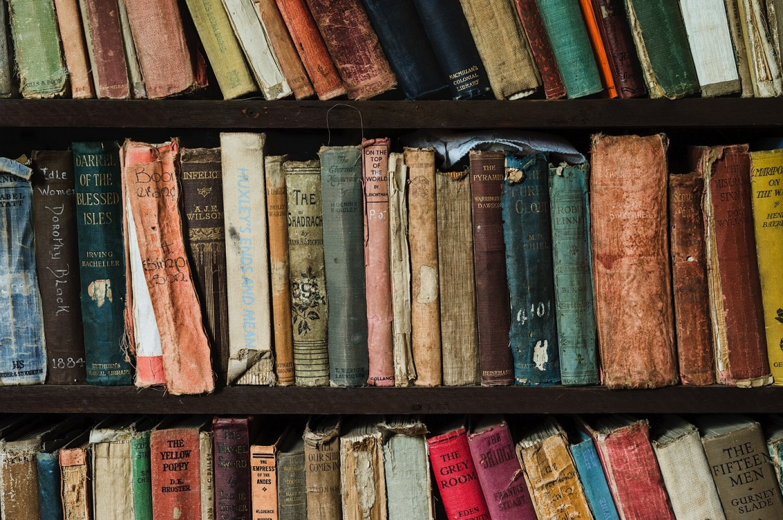 the-book-shelf