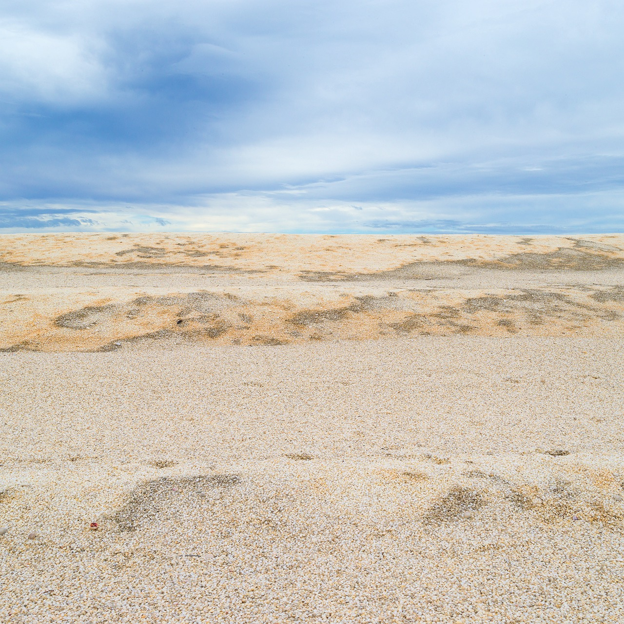 shark-bay-shell-beach-dunes