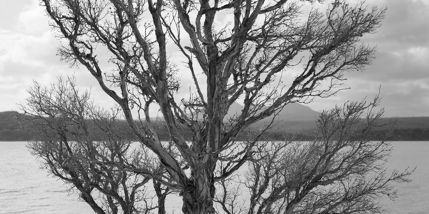 02_hammersley-inlet-fitzgerald-river-np