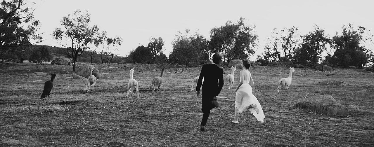 western-australian-farm-wedding-64
