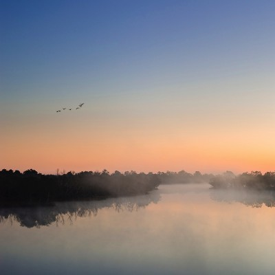 Dawn Mist on a River