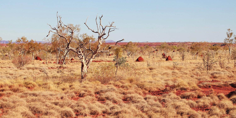 karijini_national_park-western_australia_24