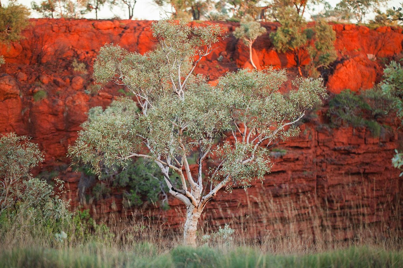 karijini_national_park-western_australia_32