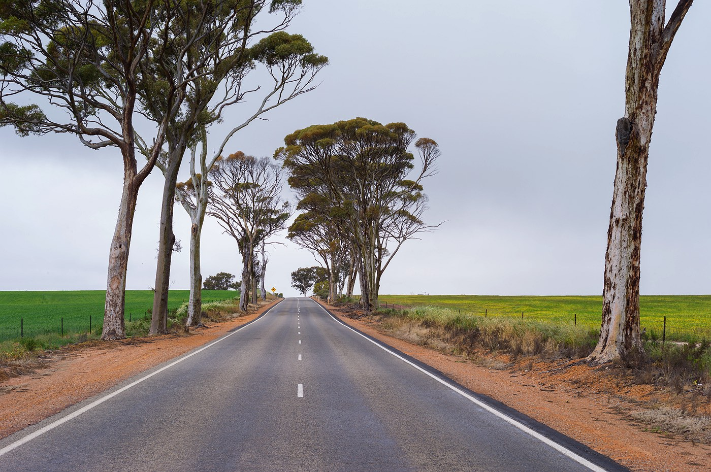 01_road-to-wyalkatchem_farming_western_australia_rob-dose