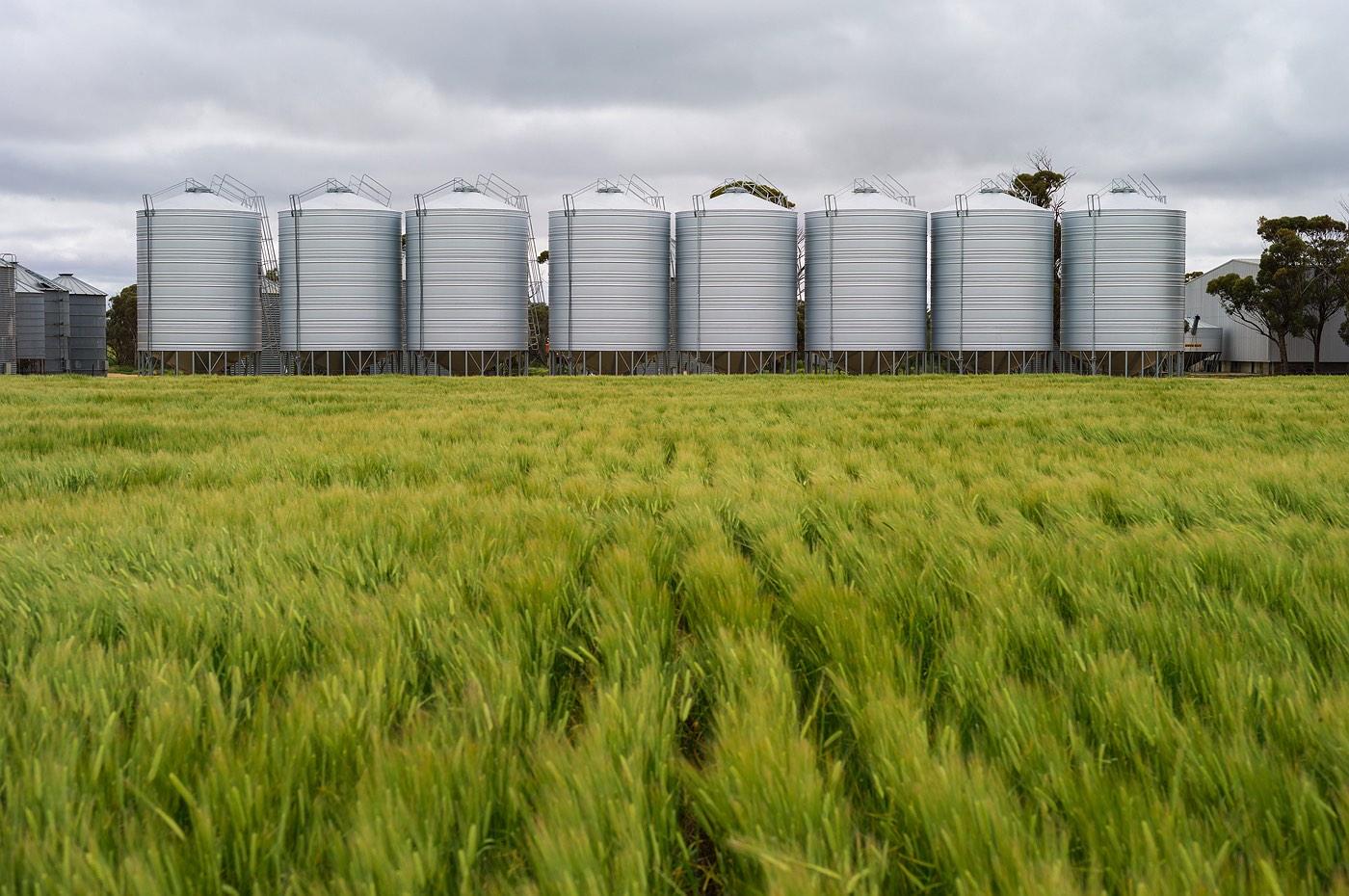 02_wyalkatchem_farming_grain-silos_western_australia_rob-dose